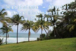 Martinique Anse Charpentier � Le Marigot 02/2015