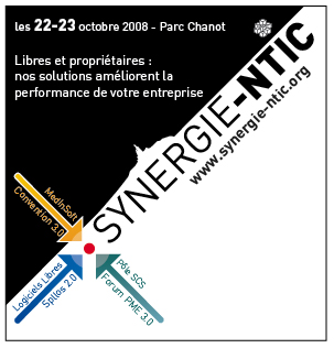 SYNERGIE-NTIC